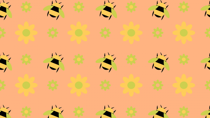 Umweltschutz: Bienenwachstücher: Plastikfreie Verpackung