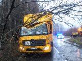 LKW von umstürzendem Baum getroffen - B 56 gesperrt