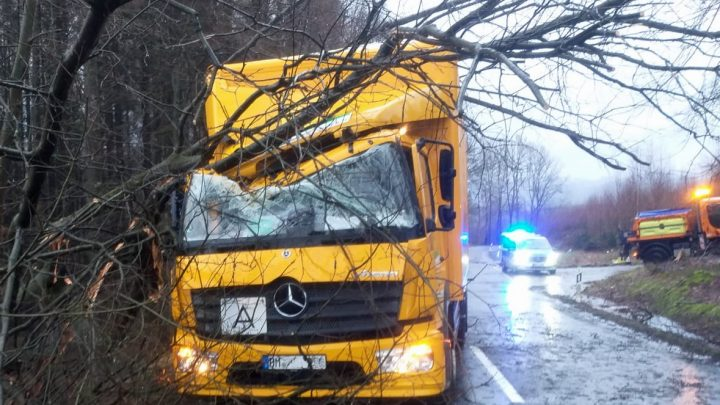 LKW von umstürzendem Baum getroffen – B 56 gesperrt