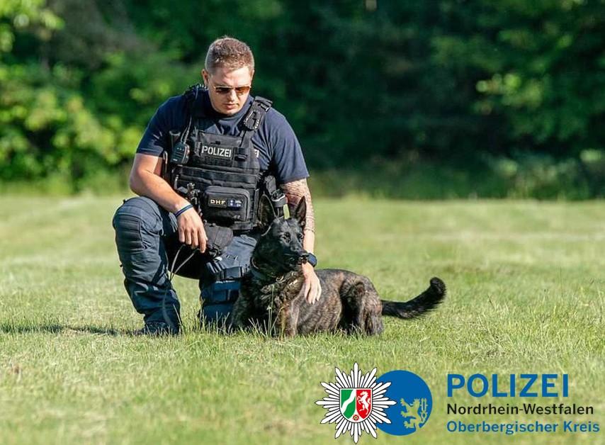 Zweiter Rauschgiftspürhund bei der Oberbergischen Polizei